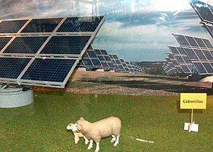 Weidendes Solarschaf, noch friedlich